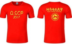 QSCP2017 Helper T-shirt